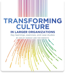 Transforming Culture in Larger Organizations